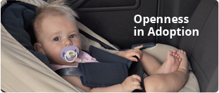 Openness To Adoption